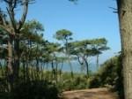 Location Vacances Loire-Atlantique
